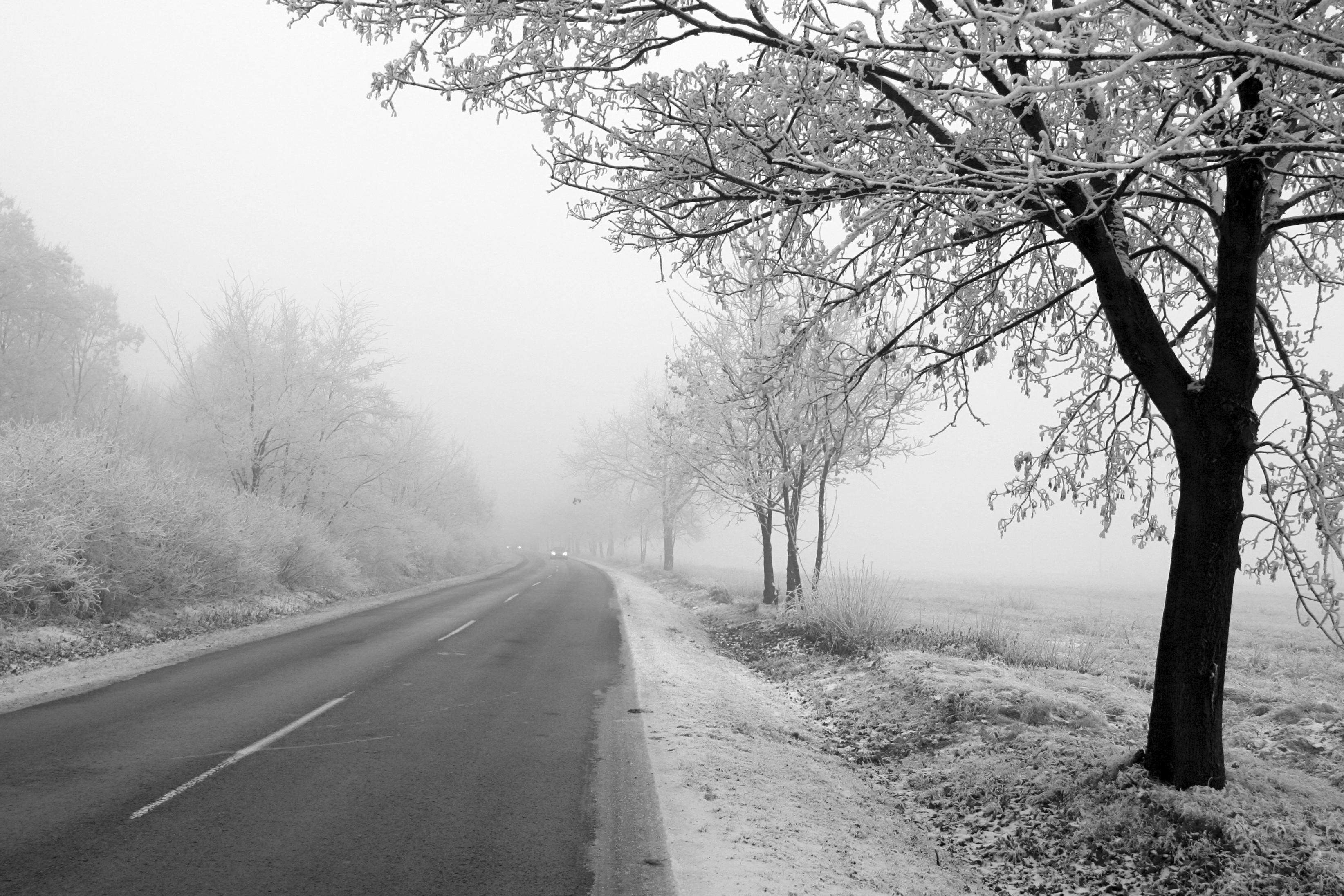 halfords winter car check